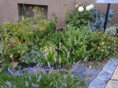 giardino a Waldbuettelbrunn