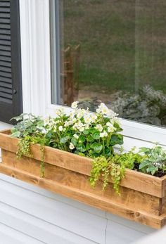 a cedar window box planter with much greenery and white flowers looks cute and r. - a cedar window box planter with much greenery and white flowers looks cute and rustic - Cedar Window Boxes, Cedar Planter Box, Diy Planter Box, Window Box Flowers, Diy Flower Boxes, Garden Globes, Window Planter Boxes, Windows, Container Gardening
