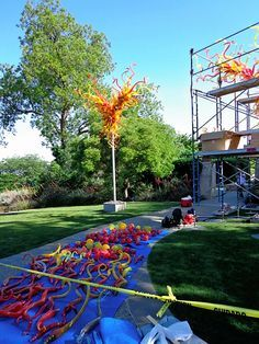 installation of Chihuly pieces at Dallas Arboretum