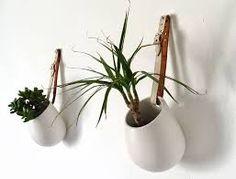 ikea lack plants - Google-Suche
