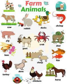 Farm and domestic animals vocabulary Farm Animals! List of domestic and farm animals with pictures in English. Learn these farm animals list with examples to improve your vocabulary words in E Learning English For Kids, Kids English, English Language Learning, Teaching English, English Vocabulary Words, Learn English Words, English Lessons, Animals Name With Picture, Farm Animals List