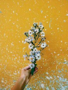 รูปภาพ flowers, yellow, and aesthetic