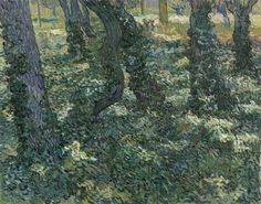 Undergrowth, 1889, Vincent van Gogh, Van Gogh Museum, Amsterdam (Vincent van Gogh Foundation)