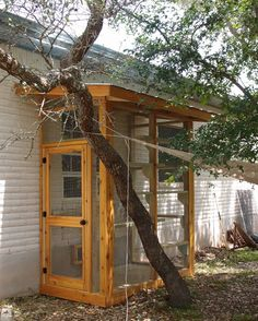 Outdoor Cat Enclosure, Cat Run, Cat Garden, Cat Condo, Outdoor Cats, Backyard, Patio, Space Cat, Diy Stuffed Animals