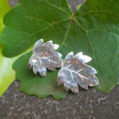 Specifications:Sterling silverSize x stunning leaf earrings were inspired by the South African wine cultivar Pinotage. South African Wine, Leaf Earrings, Handmade Sterling Silver, Plant Leaves, Jewelry Accessories, Jewellery, Unique, Growing Up, Jewels