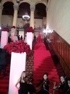 Living red carpet!