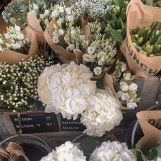 My Flower, Beautiful Flowers, Deco Floral, Flower Aesthetic, Beige Aesthetic, Belle Photo, Planting Flowers, Flower Arrangements, Bloom