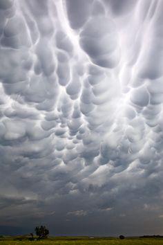 Camille Seaman. Nepholography Genius. Mammatus clouds. #clouds #camilleseaman #mammatus