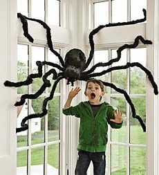 Halloween party room decorations for kids