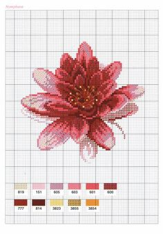 Мобильный LiveInternet схемы красивых цветов | madam_marina - Дневник madam_Marina |