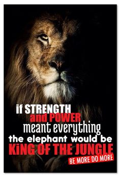 if STRENGTH and POWER meant everything the elephant would be KiNG OF THE JUNGLE. Be More, Do More.