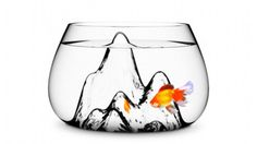 Fishscape Fish Bowl is one of our favorites which is why we're featuring it on our Andy+Rose shop on OpenSky!