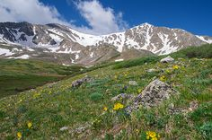 Colorado 14ers Grays and Torreys Peak : Mountain photography by Aaron Spong