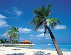 caribbean - Google-haku