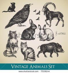 stock vector : Vector animals set - raven, cats, flying birds, rabbits, boar, goat
