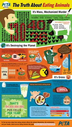 The Truth About Eating Animals #infographic #vegan #animals