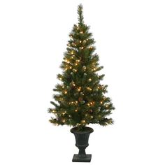 Ashberry 5' Green Artificial Christmas Tree with 150 Mini Clear Lights
