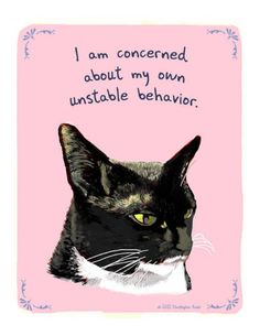 Tiny Confessions are illustrations of dogs, cats, etc. along with their secret confessions. Crazy Cat Lady, Crazy Cats, Weird Cats, Arte Peculiar, Gatos Cats, I Love Cats, Cat Art, Funny Cats, Your Pet