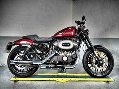 Harley 1200, Harley Davidson Sportster 883, Harley Davidson Sportster 1200, Harley Davidson Motorcycles, Harley Roadster, Harley Davidson Roadster, Motorcycles For Sale, Custom Motorcycles, Sportster 48