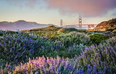 A fantastic High Dynamic Range photo from Ft Baker as only Trey Radcliff can produce.