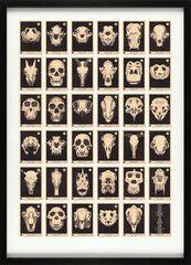 Skulls A to Z Alphabet print from 67inc