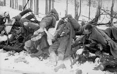1939 1945 Soldats soviétiques tués à Kholm en janvier 1942. Avec plus de 20 millions de morts, l'Union soviétique paya le tribut humain le plus élevé de la Seconde Guerre mondiale.- Pertes humaines pendant la Seconde Guerre mondiale — Wikipédia