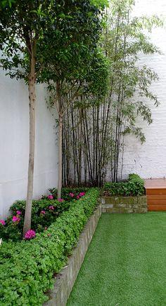 amazing planting scheme chelsea fulham battersea london