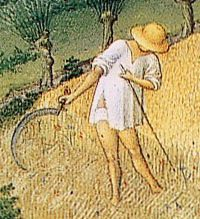 Early 15thC Les Tres Riches Heures de Duc de Berry. Man working in the fields in shirt and short underpants.