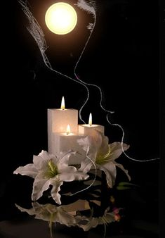 Good Night Love Images, Good Night Gif, Good Night Image, Beautiful Gif, Beautiful Flowers, Beautiful Pictures, Good Night Greetings, Amazing Gifs, Candle In The Wind