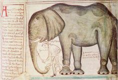 Henry III's elephant from Matthew Paris, Corpus Christi College, Cambridge…