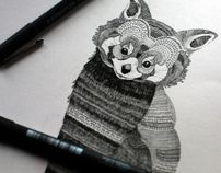 Red Panda drawing - style for andrea's thumbs up dog? Panda Drawing, Up Dog, Red Panda, Logo Inspiration, Pattern Design, Wildlife, Drawing Style, Edinburgh Scotland, Ink