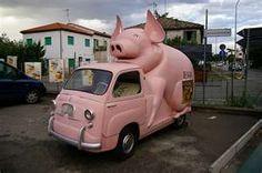 Pig-mobile