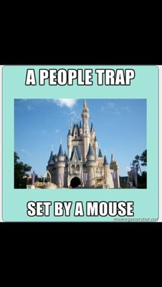 People trap set by a mouse! : )