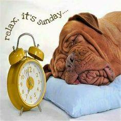 Sunday....