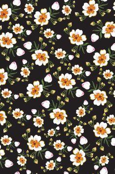 Flores en fondo negro