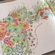 Jardim secreto/ Flores e Folhas /Johanna Basford
