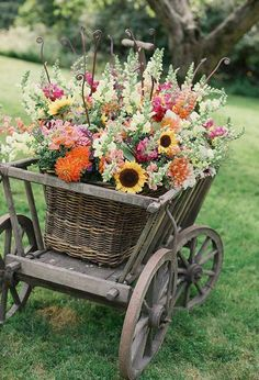 Vintage Bicycle, Painted and Repurposed as an Outdoor  Cut Flower container!!  Beautiful!!!!