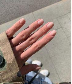 Manicure that gives a well-groomed girl - #blacknail #girl #kyliejennernail #Manicure #nageldesign #nagellack #nailwedding #naturalnail #pinknail #shortnail #summernail #wellgroomed