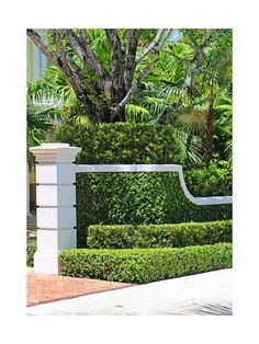 Bezoek architecturale hagen met Lee F. Mindel-foto's Architecturale samenvatting Source by sybil Tropical Landscaping, Front Yard Landscaping, Florida Landscaping, Tropical Backyard, Tropical Gardens, Landscape Design Plans, Landscape Architecture, Architecture Design, Palm Springs Florida