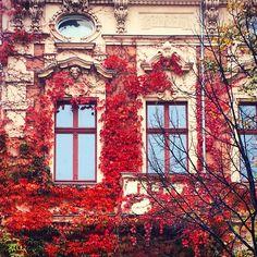 Potsdam, Herbst