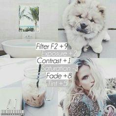 F2 +9 Exposure +2 Contrast +1 Saturation -3 Fade +8  Tint +5