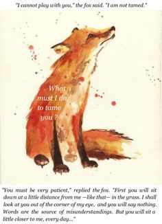 the little prince quotes fox - Recherche Google