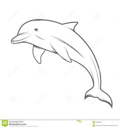Illustration of mammals … Dolphin illustration stock vector. Illustration of mammals … Dolphin Drawing, Dolphin Art, Blackwork, Osiris Tattoo, Animal Drawings, Art Drawings, Dolphins Tattoo, Kindergarten Art Projects, Flamingo Art