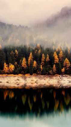 Fall Landscape iPhone Wallpaper