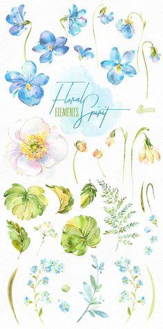 This Floral Spirit set of hand painted watercolor separate floral Elements. Perfect graphic for diy projects, wedding invitations, greeting cards, photos, posters, quotes and more. ----------------------------------------------------------------- INSTANT DOWNLOAD Once payment is cleared,
