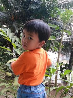 My 3years old son