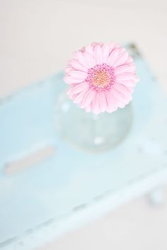 pastels.quenalbertini: Soft blue and pink pastel