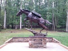 A true War Horse, a scrawny mare called Reckless,  Sgt Reckless and promoted to Staff Sgt Reckless, a true Korean War Hero, she earned 2 Purple Hearts, taking shrapnel and saving soldiers.The statue is in the National Museum of the Marine Corps in Virginia.