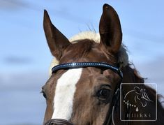 Horse's browband made with tila beads - Ellikki. Horse Bridle, All About Horses, Loom Beading, Equestrian, Horse Stuff, Beads, Animals, Diy, Beading