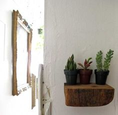 mini succulents on a rough-hewn chunk of wood Easy Diy Projects, Wood Projects, Wooden Shelves, Wood Shelf, Travel Usa, My Dream Home, Interior Inspiration, Ladder Decor, Decoration